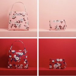 Color by Cath Kidston☆